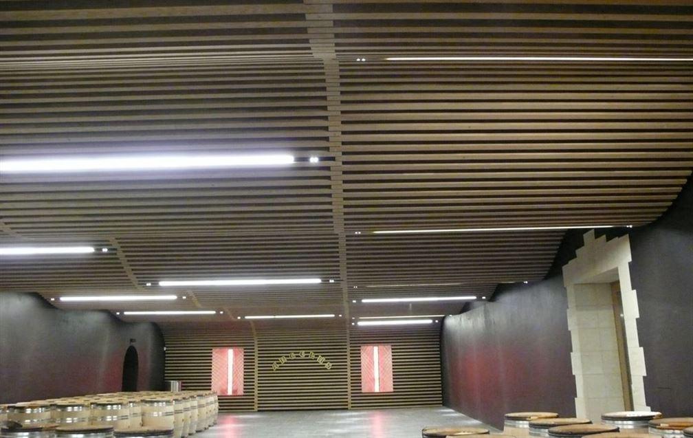 Le fameux plafond ondulé