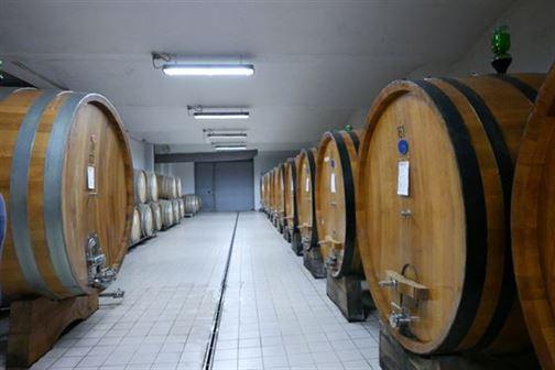 Le chai de la Cantina Sociale Bergamasca, la plus importente cave de Lombardie, avec ses 150 adhérents sur 160 ha de vignes